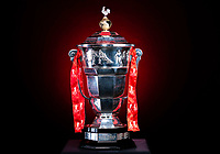 Picture by Allan McKenzie/SWpix.com - 06/11/2018 - Commercial - Rugby League - Rugby League World Cup Trophy - Halifax, England - The Paul Barrière Rugby League World Cup trophy with the newly-restored cockerel on top.