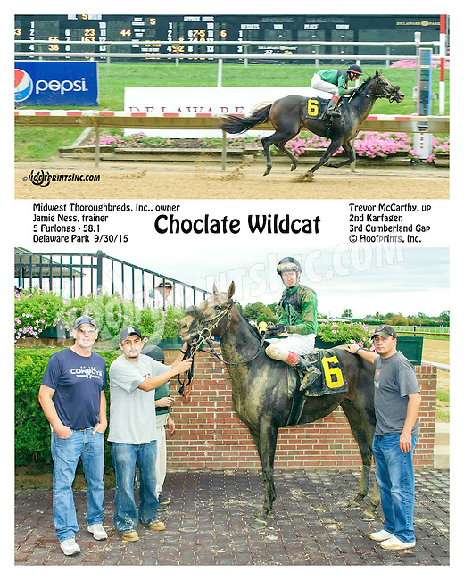 Chocolate Wildcat winning at Delaware Park on 9/30/15