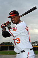 Feb 27, 2010; Tampa, FL, USA; Baltimore Orioles  catcher Luis Bernardo (83) during  photoday at Ed Smith Stadium. Mandatory Credit: Tomasso De Rosa