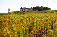 A view of Chateau Yquem and its vineyard in Sauternes. At harvest time with vines with yellow autumn colour leaves on the rolling hill. The medieval chateau on the hilltop in the background. Château d'Yquem, Sauternes, Bordeaux Gironde Aquitaine France Europe