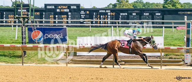 Runninginthevale winning at Delaware Park on 8/24/16