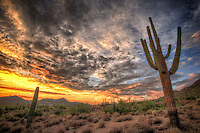 Usery Mountain Sunset - Arizona