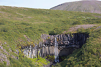 """Wasserfall Svartifoss, """"schwarzer Wasserfall"""", Skaftafell-Nationalpark im Südosten Islands, Vatnajökull Nationalpark, Stórilækur stürzt über eine Felskante, die von Basaltsäulen gebildet wird, waterfall, Black Falls, Vatnajökull National Park"""