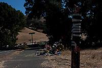 Isaac Brott Roadside Memorial _ Day 8