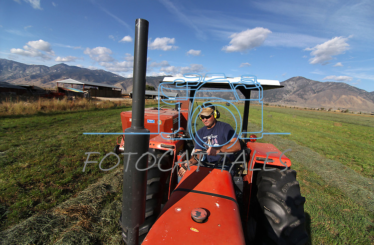 Rancher Nick Uhart bales hay in Minden, Nev., on Monday, Oct. 3, 2011. .Photo by Cathleen Allison