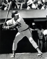 Tony Armas Oakland A's slugger. (1981 photo by Ron Riesterer/photoshelter)