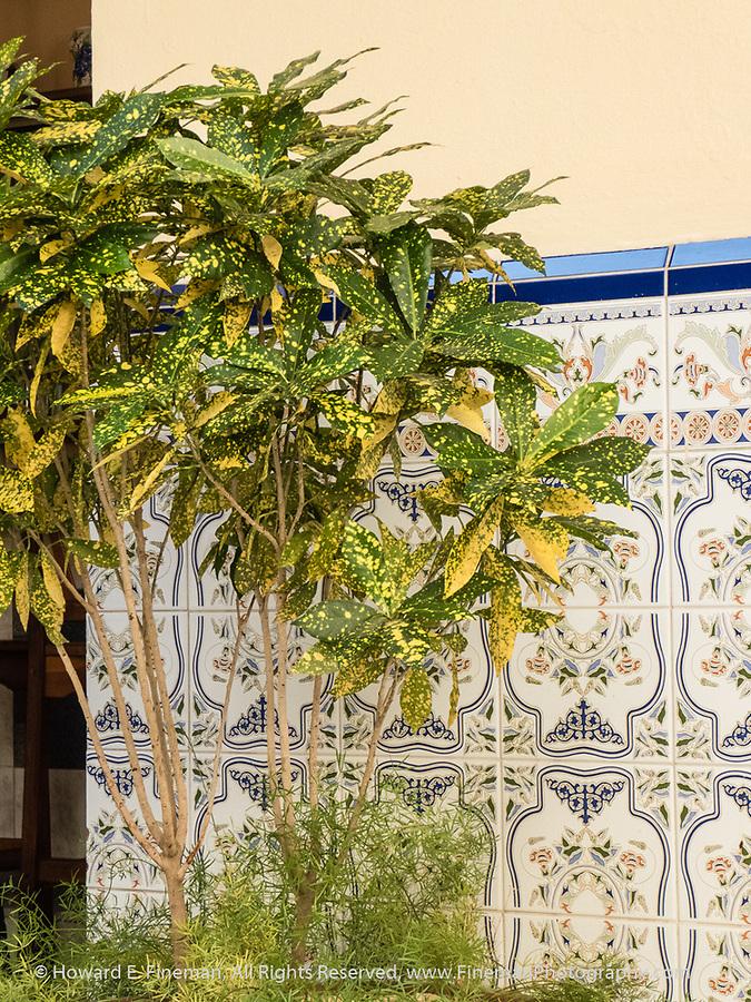 Decorative patio tiles, Hotel Union, Cienfuegos