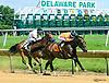 Colony Strike winning at Delaware Park on 7/8/17