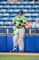 Lynchburg Hillcats catcher Logan Ice (20) at bat during a game against the Salem Red Sox on May 10, 2018 at Haley Toyota Field in Salem, Virginia.  Lynchburg defeated Salem 11-5.  (Mike Janes/Four Seam Images)
