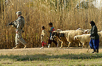 A soldier with the 10th Mountain Division is closely followed by villagers and their sheep near Yusifiyah, Iraq.