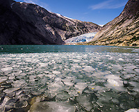 Ice floats in the Nigardsbreen glacial lake below the Nigardsbreen glacier, Jostedal region, Norwa