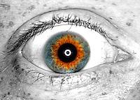 The eye of Pat.