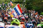 The peloton climb Mur de Huy for the 2nd time during the 2019 La Fleche Wallonne, Belgium, 24 April 2019.<br /> Photo by Thomas van Bracht / PelotonPhotos.com / Cyclefile