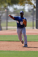 Brian Mathews - Los Angeles Dodgers - 2009 spring training.Photo by:  Bill Mitchell/Four Seam Images