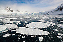 Norway, Svalbard, fjord covered with ice floes, glacier in background
