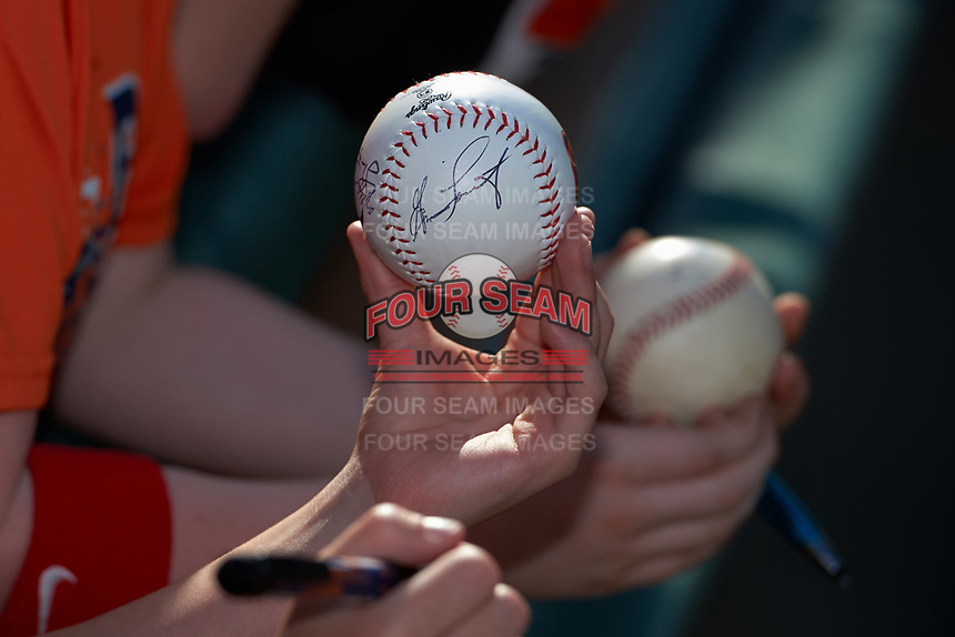Young fan holds out a baseball to get autographed after a Detroit Tigers exhibition game against the Florida Southern Moccasins on February 29, 2016 at Joker Marchant Stadium in Lakeland, Florida.  Detroit defeated Florida Southern 7-2.  (Mike Janes/Four Seam Images)