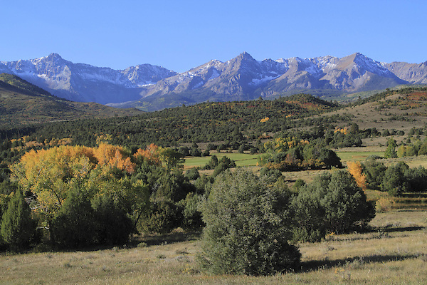 Sneffels Range with autumn colors near Telluride, Colorado, USA.