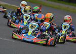 Formula Kart Stars Round 8