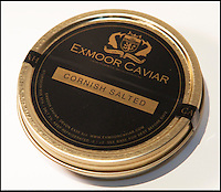 BNPS.co.uk (01202 558833)<br /> Pic: PhilYeomans/BNPS<br /> <br /> A tiny fish farm in the shadow of Exmoor in Devon has become Britains only caviar farm, after perfecting the tricky production of the famous luxury.<br /> <br /> Since 2008 harvesting the famous Russian delicacy from the wild has been banned, after over fishing seriously threatened the survival of the Sturgeon that produced it.<br /> <br /> But with one fish capable of producing over &pound;2000 of 'black gold' the quest has been on to come up with a sustainable farmed alternative.<br /> <br /> Now celebrity chefs are queing up to buy the first harvest from Kenneth Benning's London Fine Food Company. <br /> <br /> Kenneth dreamt up the idea three years ago, with Pat and George Noble who ran the Exmoor farm. But they have had to wait untill the last few week's to start full scale production.<br /> <br /> Caviar farming is notoriously difficult with water temperature and quality critical and sturgeon taking from six to 25 years to grow large enough to start producing eggs to sell.<br /> <br /> Fortunately the Exmoor farm sits alongside the free flowing River Mole that provides a ready source of fresh water.