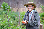 Pascual Antesano works in his garden in the Guarani indigenous village of Choroquepiao, Bolivia. He and his neighbors started the gardens with assistance from Church World Service, supplementing their corn-based diet with nutritious vegetables and fruits.
