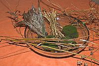 Kinder flechten Nistkugel für Vögel, Vogel, Nisthilfe, Nest, Kugelnest. Material: Weidenzweige, Schilfblüten, Moos, Hopfen- und Weinranken