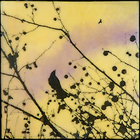 Encaustic painting of sunset sky with photography silhouette of bird in tree branch with berries. SOLD