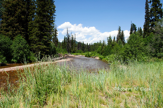 Monture Creek, Montana