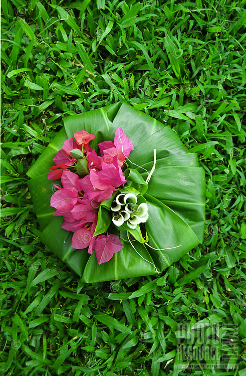 Hawaiian hookupu offering made from ti leaves with bouganvilla pink flowers on top