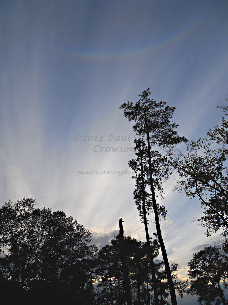 Circumzenithal Arc at Sunset