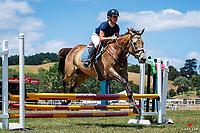 Class 32 Intro Horse 80cm. 2020 NZL-Fieldline Horse Floats Brookby Showjumping Summer GP Show. Papatoetoe Pony Club. Auckland. Sunday 9 February. Copyright Photo: Libby Law Photography