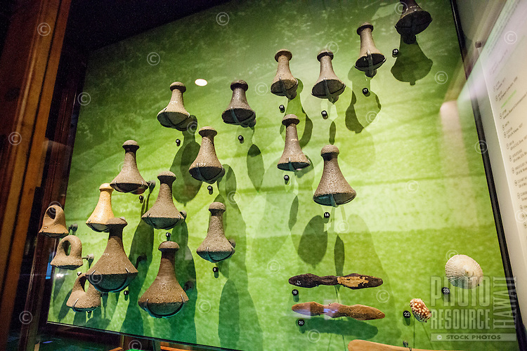 A wall of poi pounders and other artifacts as part of the Poi Pounder collection on display at the Bishop Museum, Honolulu, O'ahu.