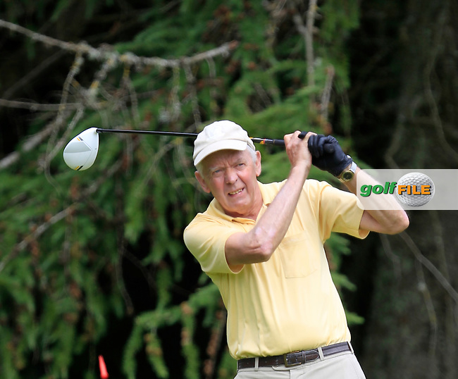 Bert Burke (Moate) on the 8th tee during Round 1 of the Leinster Seniors Amateur Open Championship at Enniscorthy Golf Club on Tuesday 23rd June 2015.<br /> Picture:  Thos Caffrey / www.golffile.ie