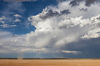Wild rain clouds with faint rainbow above an empty and dry Mabuasehube Pan with dustdevil in the Kgalagadi.