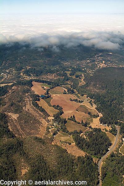 aerial photograph vineyards fog Mayacamas Mountains Sonoma Valley Sonoma County, California