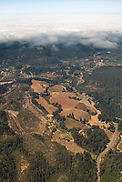 aerial photograph vineyards fog Mayacamas Mountains Sonoma Valley Sonoma County, California