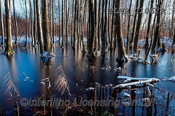 Marek, CHRISTMAS LANDSCAPES, WEIHNACHTEN WINTERLANDSCHAFTEN, NAVIDAD PAISAJES DE INVIERNO, photos+++++,PLMP01062P,#xl#