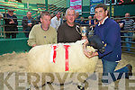 Charles Walsh, Caherciveen, right, pictured with judges Padraig Dean and Lar Grifin, after his ram won the the champion Scotch Ram Lamb title at the Scotch Ram Lamb and Aged Ram show and Sale in the Mid Kerry Co Op mart, Milltown on Saturday..NO FEE