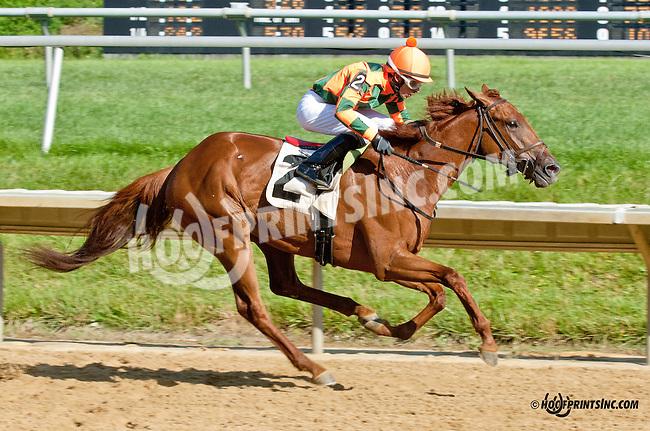 Bellamy Fleet winning at Delaware Park on 7/29/13