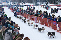 Musher # 42 Sonny Lindner at the Restart of the 2009 Iditarod in Willow Alaska