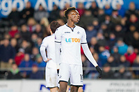 Tammy Abraham of Swansea City during the EPL - Premier League match between Swansea City and Manchester City at the Liberty Stadium, Swansea, Wales on 13 December 2017. Photo by Mark  Hawkins / PRiME Media Images.