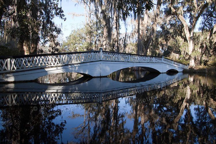 Magnolia Plantation and gardens near Charleston South Carolina foot bridge, reflections, reflection, water, pond, cypress trees