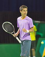 09-02-13, Tennis, Rotterdam, qualification ABNAMROWTT, Fabian van der Lans