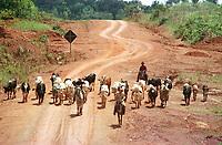 Vaqueiros tocam o gado na rodovia Transamazônia no trecho entre as cidades de Altamira e Itaituba no estado do Pará, Brasil. <br />Foto Paulo Santos/Interfoto