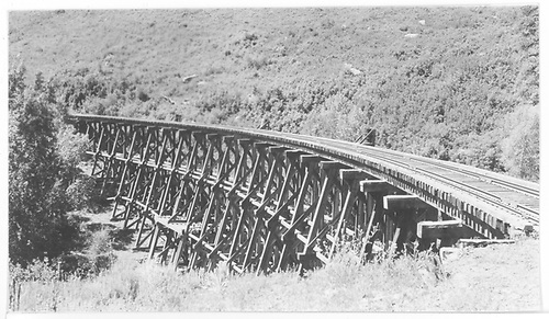 Looking northbound in track direction along RGS Bridge 160-A, the Lightner Creek Trestle.<br /> RGS  Franklin Junction, CO  Taken by Maxwell, John W. - 7/1/1941