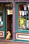 A dog patiently waits for its owner outside the Sunshine Pharmacy in Telluride on Saturday. © Michael Brands. 970-379-1885.