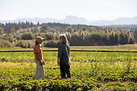 Washington State Dept. of Agriculture, Food Safety, Bridging the Gap