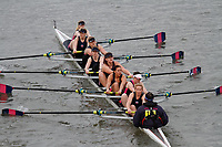 Crew: 151 Twickenham Rowing Club B<br /> <br /> Women's Head of the River (WeHoRR) 2017<br /> <br /> To purchase this photo, or to see pricing information for Prints and Downloads, click the blue 'Add to Cart' button at the top-right of the page.