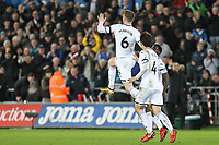 Alfie Mawson of Swansea City  celebrates scoring his goal during the Premier League match between Swansea City and Liverpool at the Liberty Stadium, Swansea, Wales on 22 January 2018. Photo by Mark Hawkins / PRiME Media Images.