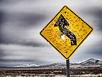 A shot-up curve left traffic sign along a dirt road near Golconda, Nevada.