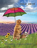 PAUL,REALISTIC ANIMALS, REALISTISCHE TIERE, ANIMALES REALISTICOS, paintings+++++NW_Umbrella-Dog-F,USLGNW18,#a#, EVERYDAY ,funny photos